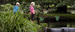 Children fishing with nets in the River Wandle, Morden Hall Park, London.