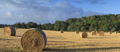 Panoramic view of harvested fields on the Slindon Estate in August, South Downs, West Sussex.