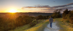 Lone walker on Box Hill, Burford Spur, Surrey, looking north at sunset.