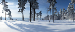 Panoramic view of Leith Hill, Surrey, in heavy snow in January.