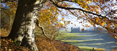 Autumnal view of Newton House at  Dinefwr, Carmartheshire, Wales.