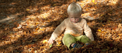 Child surrounded by autumn leaves in the garden at Quarry Bank Mill, Wilmslow, Cheshire.